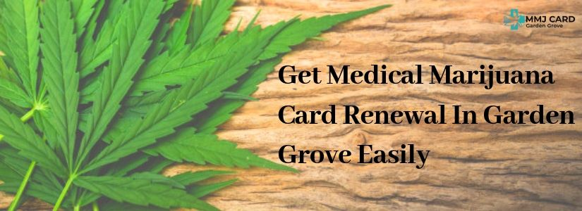 marijuana card renewal