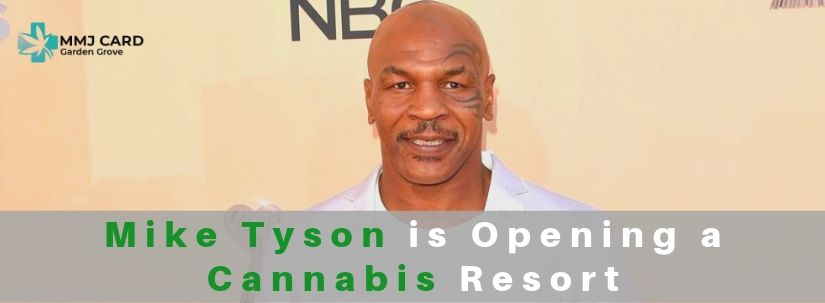 Mike Tyson Is Opening Cannabis Resort
