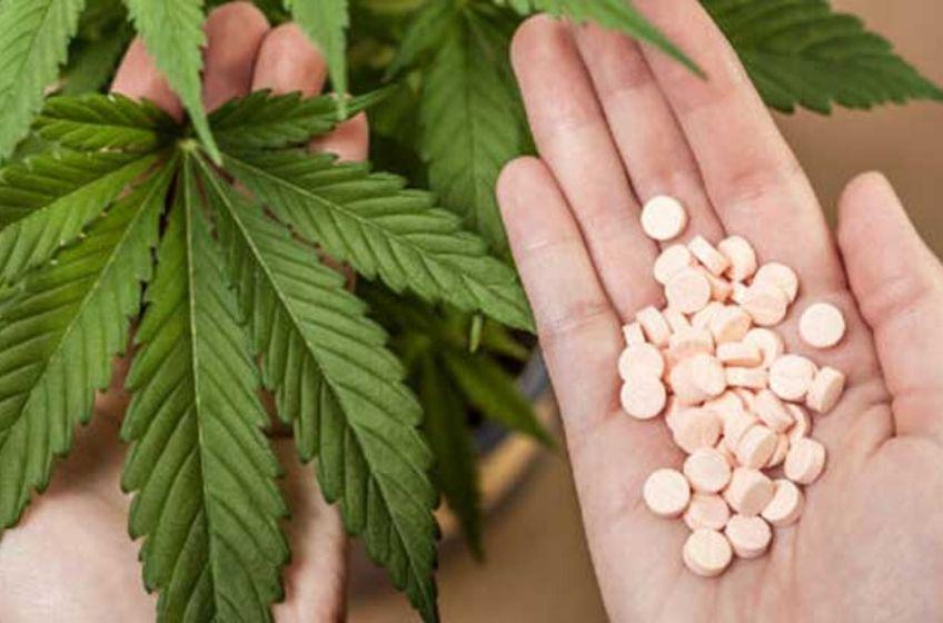 420 doctors garden grove
