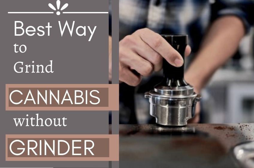 how to grind cannabis without grinder