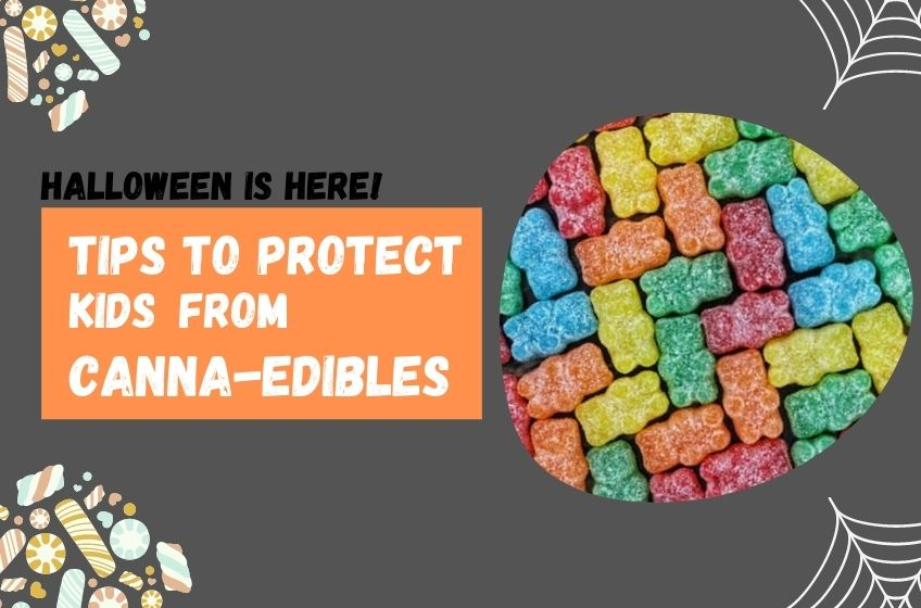 How You can protect kids from canna-edibles during Halloween